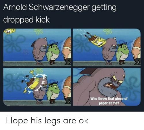 Arnold Schwarzenegger, Hope, and Who: Arnold Schwarzenegger getting  dropped kick  Who threw that piece of  paper at me? Hope his legs are ok