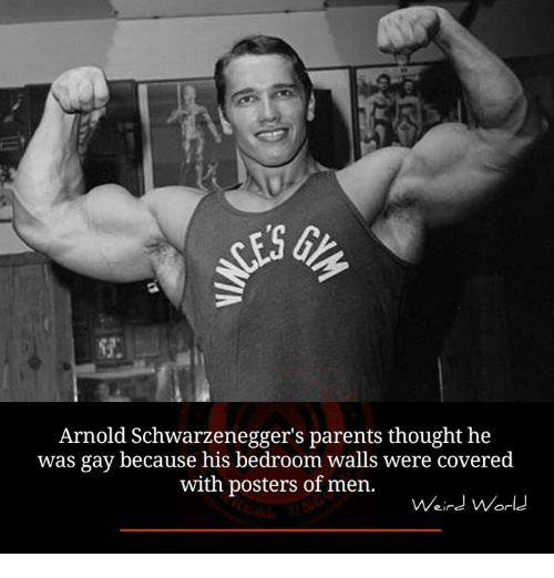 Arnold Schwarzenegger, Memes, And 🤖: Arnold Schwarzeneggeru0027s Parents  Thought He Was Gay Because