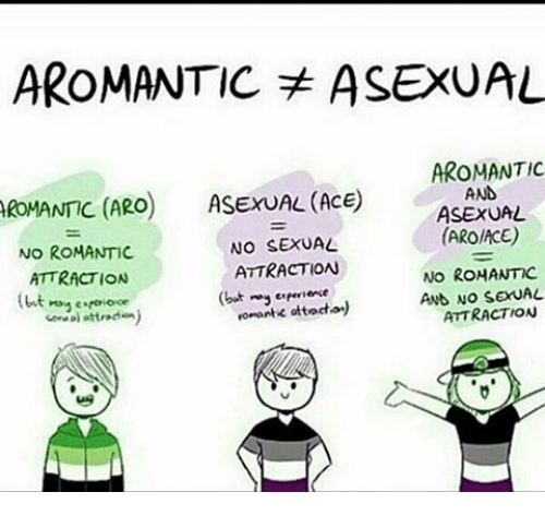 Aromantic asexual marriage net