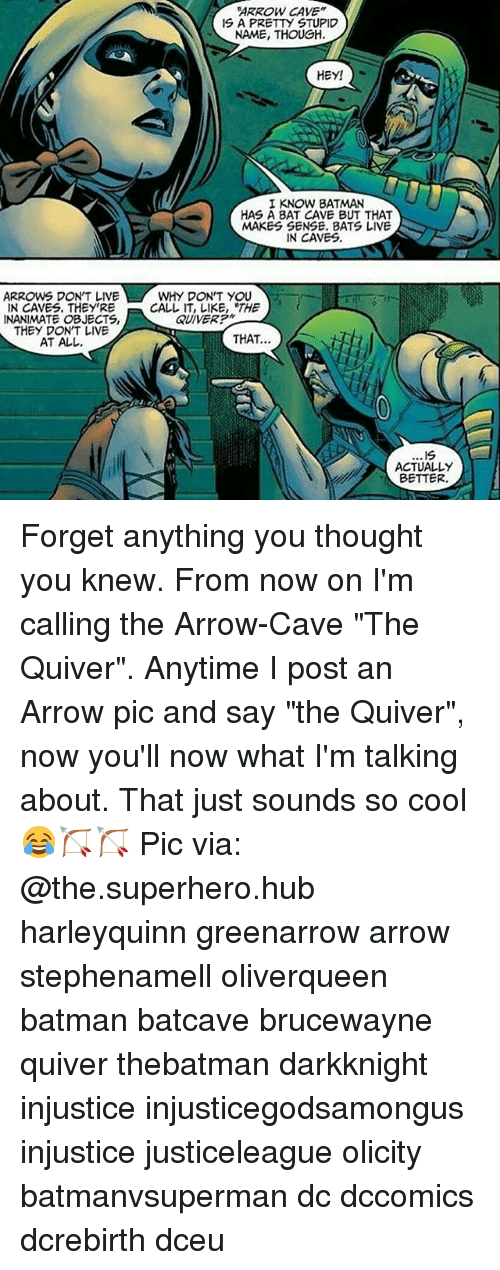 """Batman, Memes, and Superhero: ARROW CAVE""""  IS A PRETTY STUPID  NAME, THOUGH.  HEY!  I KNOW BATMAN  HAS A BAT CAVE BUT THAT  MAKES SENSE. BATS LIVE  IN CAVES.  ARROW DON'T LIVE  WHY DON'T YOU  IN CAVES. THEY'RE  CALL IT, LIKE, THE  QUIVER?""""  INANIMATE OBJECTS,  THEY DON'T LIVE  THAT.  AT ALL.  .19  ACTUALLY  BETTER Forget anything you thought you knew. From now on I'm calling the Arrow-Cave """"The Quiver"""". Anytime I post an Arrow pic and say """"the Quiver"""", now you'll now what I'm talking about. That just sounds so cool😂🏹🏹 Pic via: @the.superhero.hub harleyquinn greenarrow arrow stephenamell oliverqueen batman batcave brucewayne quiver thebatman darkknight injustice injusticegodsamongus injustice justiceleague olicity batmanvsuperman dc dccomics dcrebirth dceu"""