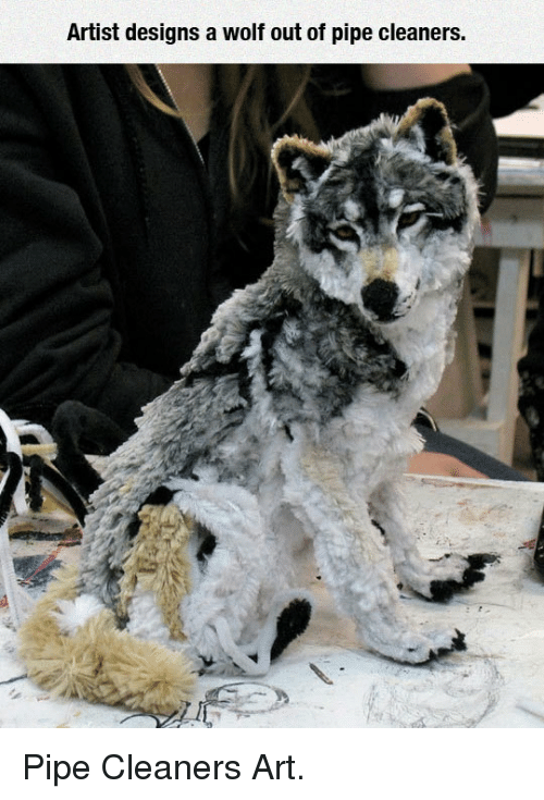 Artist Designs A Wolf Out Of Pipe Cleaners P Pipe Cleaners