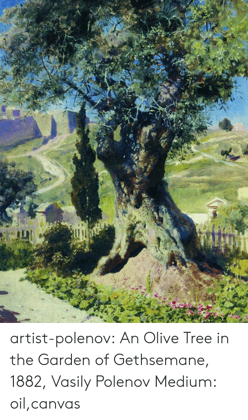 Tumblr, Blog, and Canvas: artist-polenov: An Olive Tree in the Garden of Gethsemane, 1882, Vasily Polenov Medium: oil,canvas