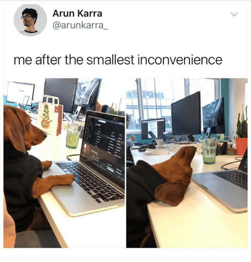 Inconvenience, The, and After: Arun Karra  @arunkarra  me after the smallest inconvenience