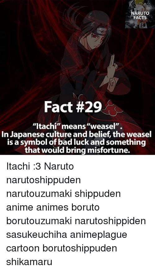 Arutto Facts Fact 29 Itachi Meansweasel In Japanese Culture And