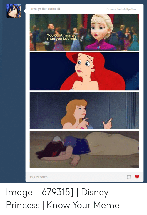 Disney, Meme, and Image: -arya flor-spring  Source: tastefullyoffen  You can't marry a  man you just met.  15,759 notes Image - 679315] | Disney Princess | Know Your Meme