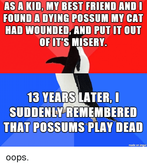 As a KID MY BEST FRIEND ANDI FOUND a DYING POSSUM MY CAT HAD