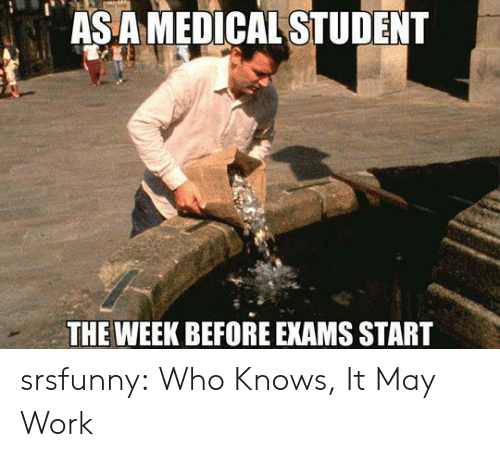 As a MEDICAL STUDENT THE WEEK BEFORE EXAMS START Srsfunny