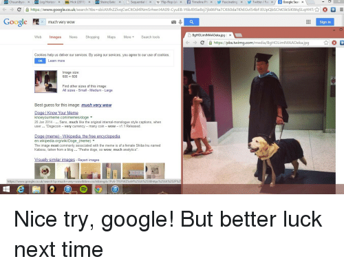 Doge Know Your