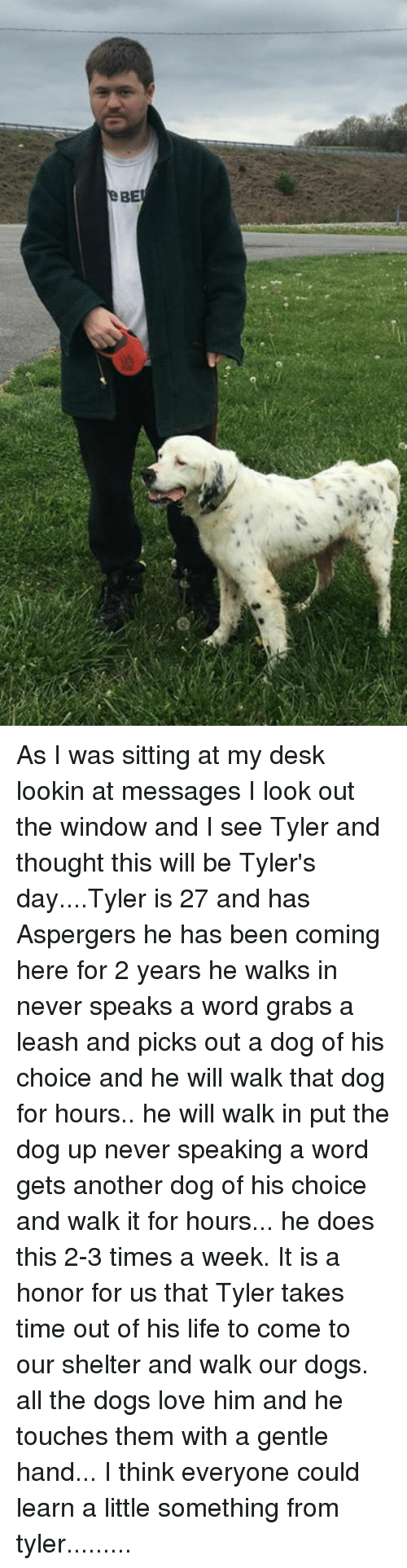 Dogs, Life, and Love: As I was sitting at my desk lookin at messages I look out the window and I see Tyler and thought this will be Tyler's day....Tyler  is 27 and has Aspergers  he has been coming here for 2 years he walks in never speaks a word grabs a leash and picks out a dog of his choice and he will walk that dog for hours.. he will walk in  put the dog up never speaking a word gets another dog of his choice and walk it for hours... he does this 2-3 times a week. It is a honor for us that  Tyler  takes  time out of his life to come to our shelter and walk our dogs. all the dogs love him and he touches them with a gentle hand... I think everyone could learn a little something from tyler.........