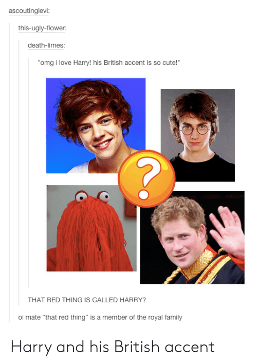 """Cute, Family, and Love: ascoutinglevi:  this-ugly-flower:  death-limes:  omg i love Harry!his British accent is so cute!""""  THAT RED THING IS CALLED HARRY?  oi mate """"that red thing"""" is a member of the royal family Harry and his British accent"""