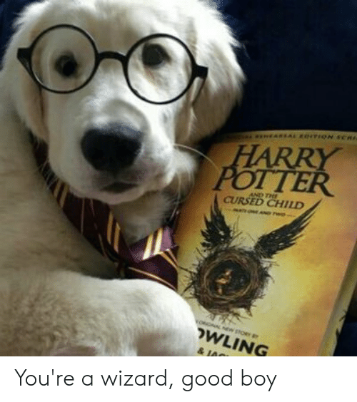 Harry Potter, Good, and Boy: asEARSAL eITION SCHI  HARRY  POTTER  AND THE  CURSED CHILD  N rwe  WLING  & JA You're a wizard, good boy