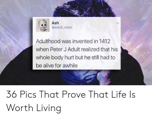 Alive, Ash, and Life: Ash  eadult mom  Adulthood was invented in 1412  when Peter J Adult realized that his  whole body hurt but he still had to  be alive for awhile 36 Pics That Prove That Life Is Worth Living