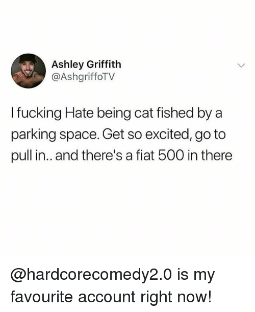 Fucking, Memes, and Fiat: Ashley Griffith  @AshgriffoTV  I fucking Hate being cat fished by a  parking space. Get so excited, go to  pull in.. and there's a fiat 500 in there @hardcorecomedy2.0 is my favourite account right now!
