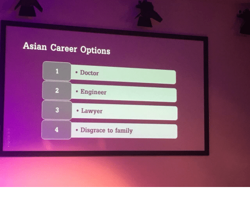 Asian, Doctor, and Family: Asian Career Options  . Doctor  . Engineer  Lawyer  . Disgrace to family