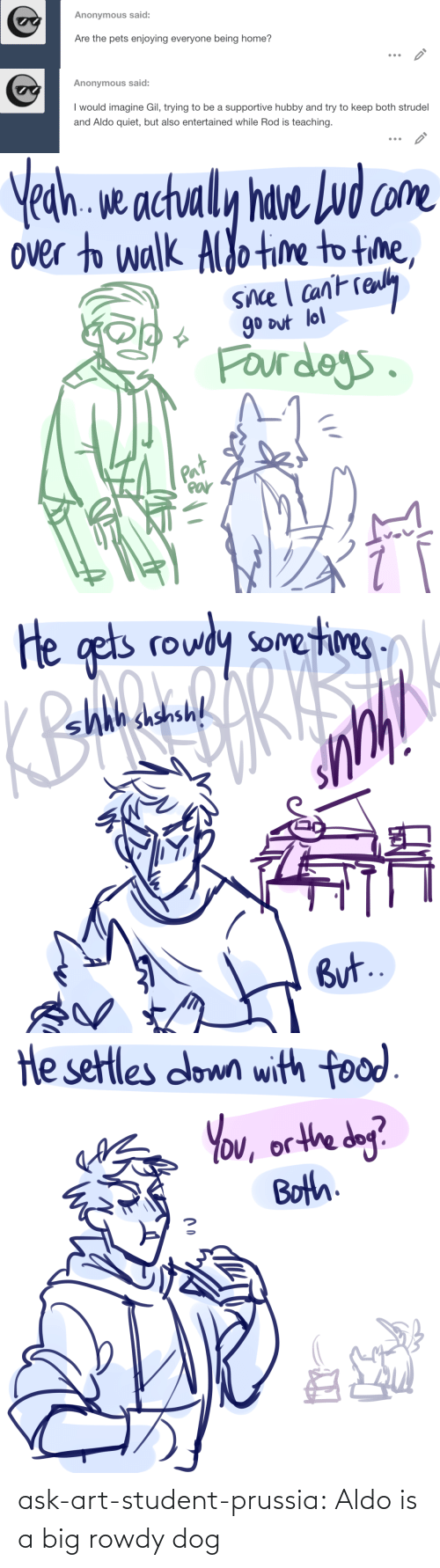 Target, Tumblr, and Blog: ask-art-student-prussia:  Aldo is a big rowdy dog