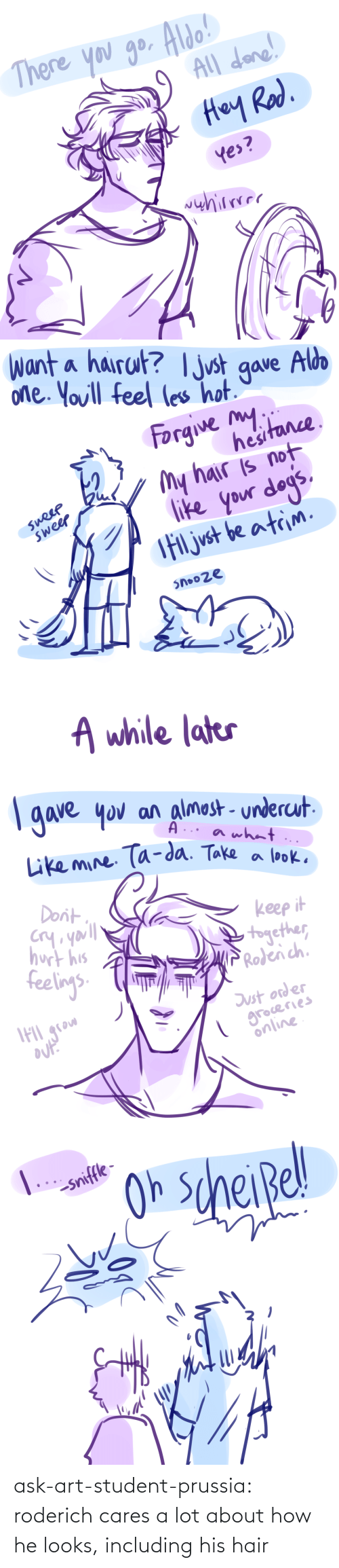 Target, Tumblr, and Blog: ask-art-student-prussia:  roderich cares a lot about how he looks, including his hair