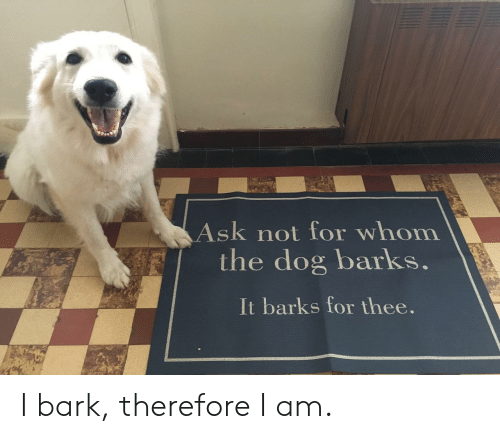 Ask, Dog, and For: Ask not for whom  the dog barks.  It barks for thee. I bark, therefore I am.