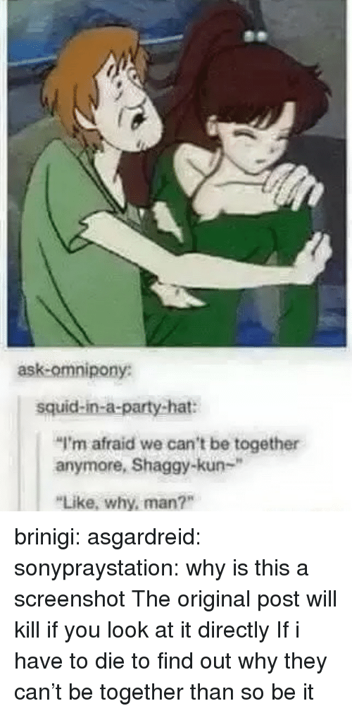 "Party, Tumblr, and Blog: ask-omnipony:  squid-in-a-party-hat:  ""I'm afraid we can't be together  anymore, Shaggy-kun-""  Like, why, man?"" brinigi: asgardreid:  sonypraystation:  why is this a screenshot   The original post will kill if you look at it directly  If i have to die to find out why they can't be together than so be it"