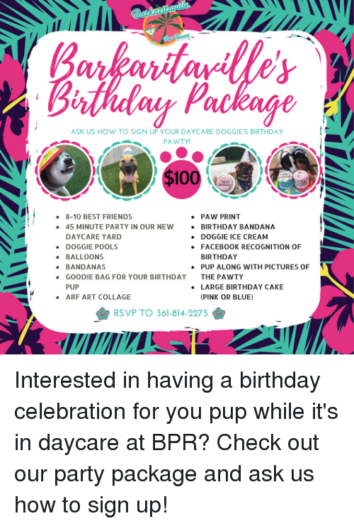 ask us how to sign up your daycare doggie s birthday pawtyi 8 10