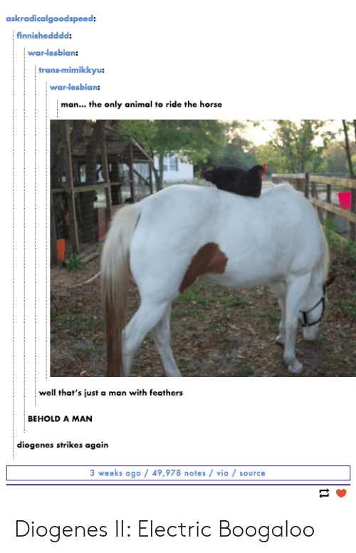 Animal, Horse, and Lesbian: askradicalgoodspeed:  finnishedddd:  war-lesbian:  trans-mimi  war-lesbian:  man... the only animal to ride the horse  well that's just a man with feathers  BEHOLD A MAN  diogenes strikes again  3 weeks ago 49,978 notes via / source Diogenes II: Electric Boogaloo