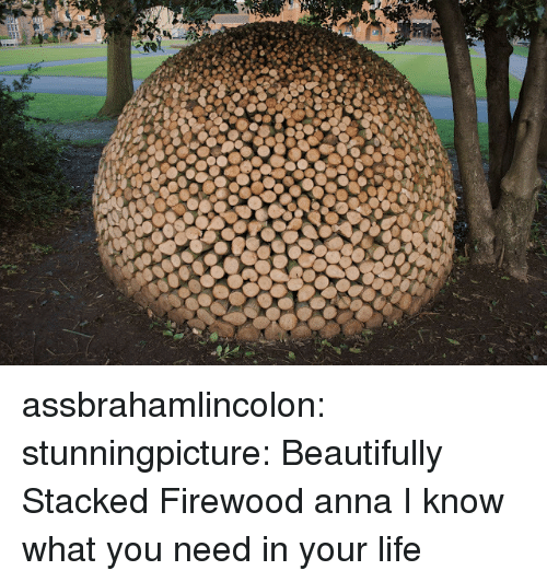 Anna, Life, and Target: assbrahamlincolon:  stunningpicture:  Beautifully Stacked Firewood  anna I know what you need in your life