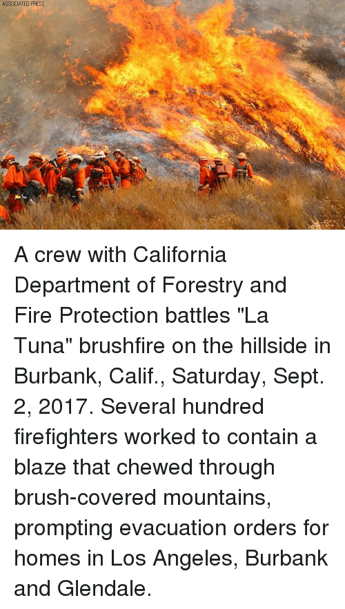 """Fire, Memes, and Blaze: ASSOCIATED PRESS A crew with California Department of Forestry and Fire Protection battles """"La Tuna"""" brushfire on the hillside in Burbank, Calif., Saturday, Sept. 2, 2017. Several hundred firefighters worked to contain a blaze that chewed through brush-covered mountains, prompting evacuation orders for homes in Los Angeles, Burbank and Glendale."""