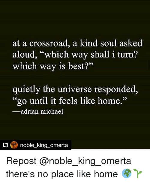 """Memes, 🤖, and King: at a crossroad, a kind soul asked  aloud, """"which way shall i turn?  which way is best?""""  quietly the universe responded,  """"go until it feels like home.""""  adrian michael  noble king omerta. Repost @noble_king_omerta there's no place like home 🌍🌱"""