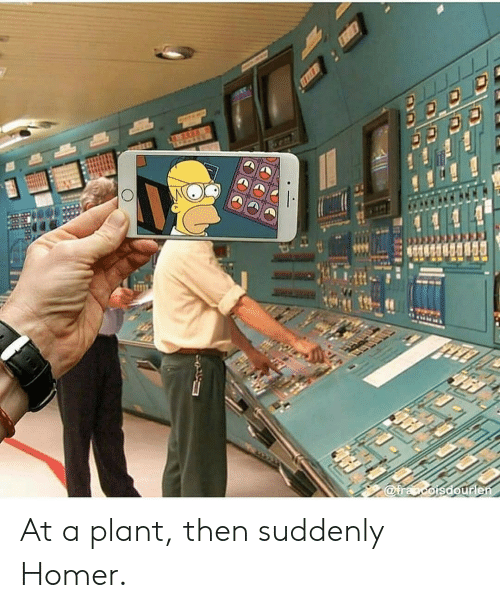 Homer, Suddenly, and Then: At a plant, then suddenly Homer.