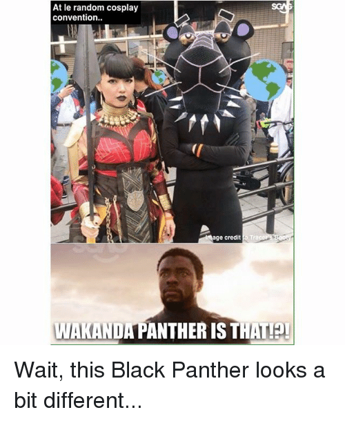 Memes, Black, and Black Panther: At le random cosplay  convention.  mage credit Tra  WAKANDA PANTHER IS THAT! Wait, this Black Panther looks a bit different...
