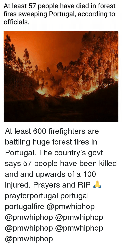 Anaconda, Memes, and Portugal: At least 57 people have died in forest  fires sweeping Portugal, according to  officials. At least 600 firefighters are battling huge forest fires in Portugal. The country's govt says 57 people have been killed and and upwards of a 100 injured. Prayers and RIP 🙏 prayforportugal portugal portugalfire @pmwhiphop @pmwhiphop @pmwhiphop @pmwhiphop @pmwhiphop @pmwhiphop