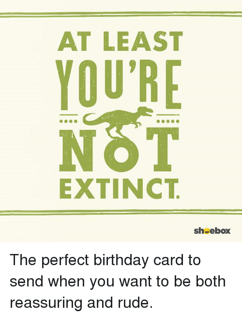 rude birthday meme At LEAST YOU'RE EXTINCT Sheebox the Perfect Birthday Card to Send  rude birthday meme