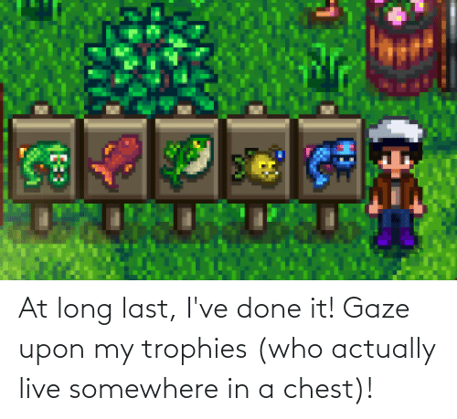 Live, Who, and Somewhere: At long last, I've done it! Gaze upon my trophies (who actually live somewhere in a chest)!