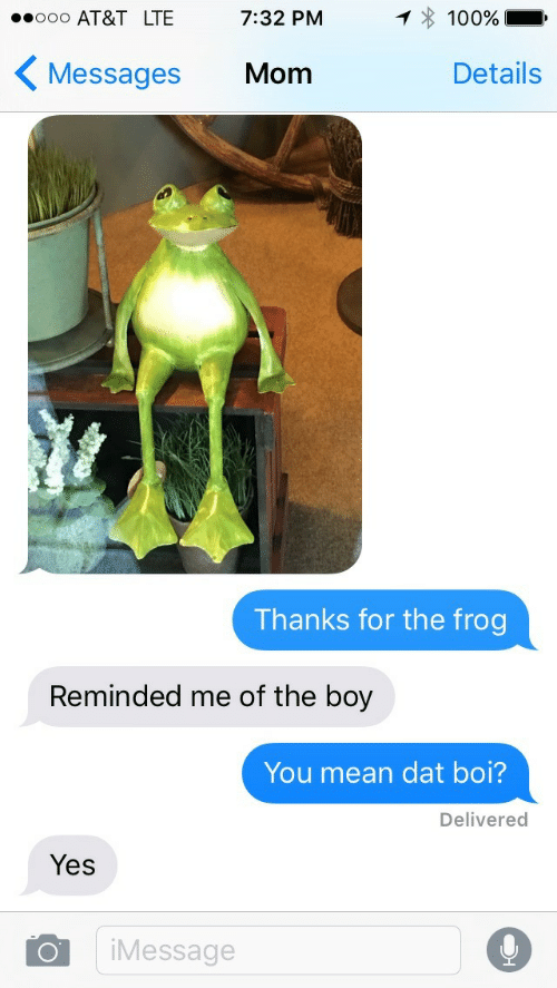 Anaconda, At&t, and Mean: AT&T LTE 7:32 PM  1*100%  Messages Mom  Details  Thanks for the frog  Reminded me of the boy  You mean dat boi?  Delivered  Yes  Message