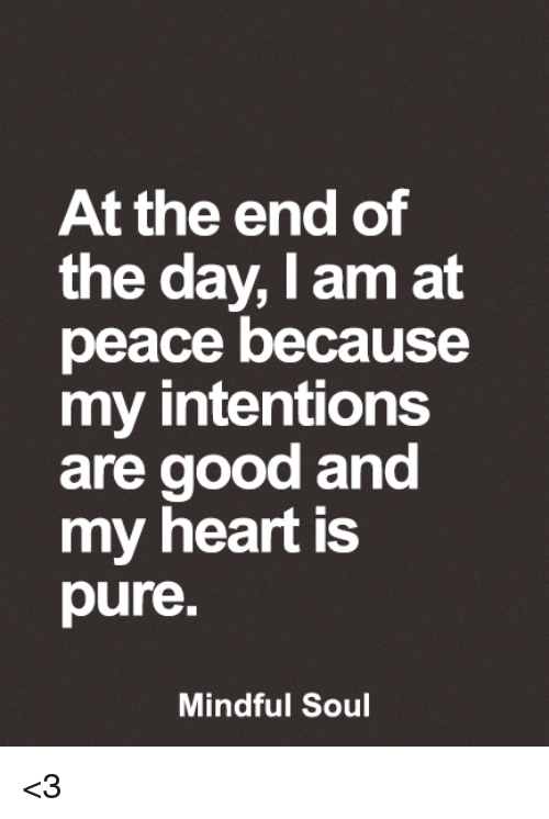 Memes, Good, and Heart: At the end of  the day, I am at  peace because  my intentions  are good and  my heart is  pure  Mindful Soul <3