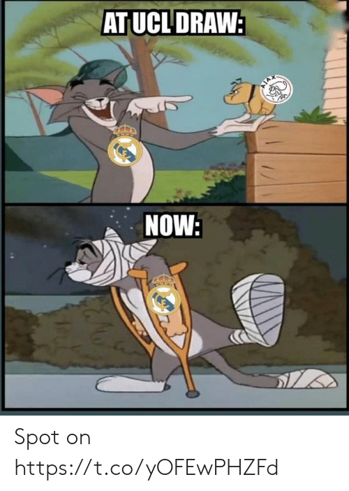 Memes, 🤖, and Ucl: AT UCL DRAW  NOW Spot on https://t.co/yOFEwPHZFd