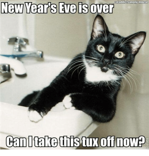 Memes, Mouse, and 🤖: ataddicts anony mouse  New Year's Eve sover  Can take this tux off now?