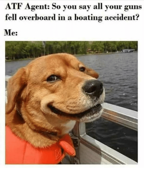 Guns, Memes, and 🤖: ATF Agent: So you say all your guns  fell overboard in a boating accident?  Me: