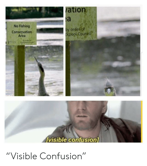"""Fishing, Order, and Confusion: ation  a  No Fishing  by order of  kpool Council  Conservation  Area  visible confusion """"Visible Confusion"""""""
