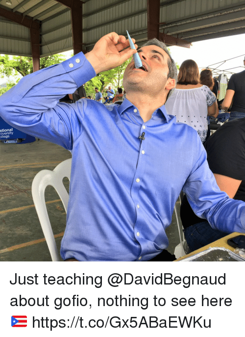 Memes, Teaching, and 🤖: ational  iversity  ollege Just teaching @DavidBegnaud about gofio, nothing to see here  🇵🇷 https://t.co/Gx5ABaEWKu