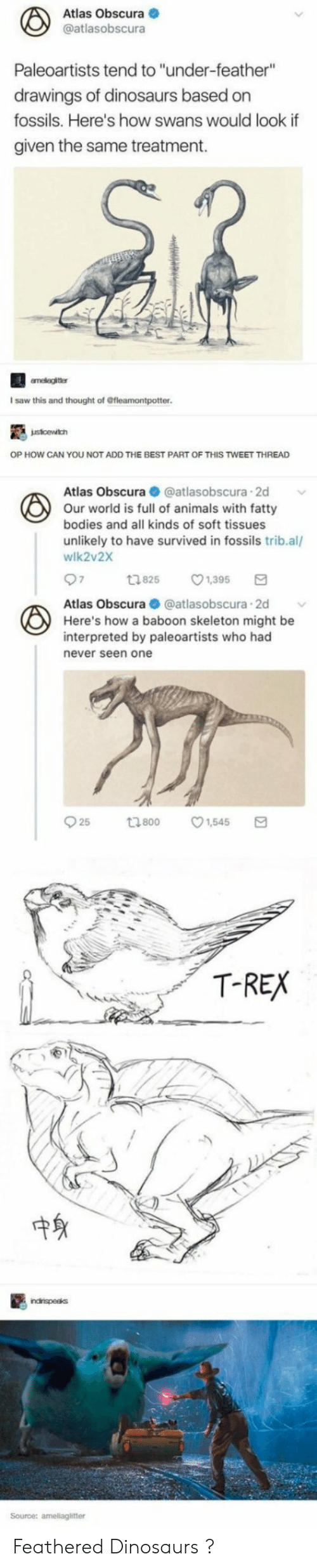 """Animals, Bodies , and Saw: Atlas Obscura  @atlasobscura  Paleoartists tend to """"under-feather""""  drawings of dinosaurs based on  fossils. Here's how swans would look if  given the same treatment.  I saw this and thought of Gfleamontpotter  OP HOW CAN YOU NOT ADD THE BEST PART OF THIS TWEET THREAD  Atlas Obscura @atlasobscura.2d  Our world is full of animals with fatty  bodies and all kinds of soft tissues  unlikely to have survived in fossils trib.al/  wlk2v2X  1825 1,395  Atlas Obscura  atlasobscura 2d  Here's how a baboon skeleton might be  interpreted by paleoartists who had  never seen one  T-REX  中身  Source: ameliaglitter Feathered Dinosaurs ?"""