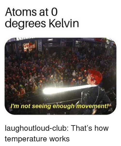Club, Tumblr, and Blog: Atoms at 0  degrees Kelvin  OH  Im not seeing enough movement laughoutloud-club:  That's how temperature works
