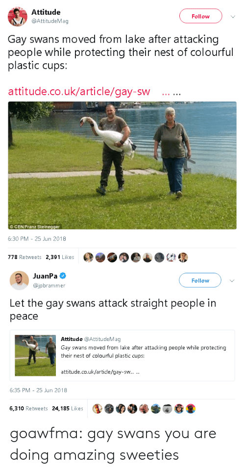 Tumblr, Blog, and Nest: Attitude  @AttitudeMag  Follow  Gay swans moved from lake after attacking  people while protecting their nest of colourful  plastic cups:  attitude.co.uk/article/gay-sw  ©CEN/Franz Steinegger  6:30 PM-25 Jun 2018  778 Retweets 2,391 Likes   JuanPa  @jpbrammer  Follow  Let the gay swans attack straight people in  peace  Attitude @AttitudeMag  Gay swans moved from lake after attacking people while protecting  their nest of colourful plastic cups:  attitude.co.uk/article/gay-sw  6:35 PM 25 Jun 2018  6,310 Retweets 24,185 Likes goawfma: gay swans you are doing amazing sweeties