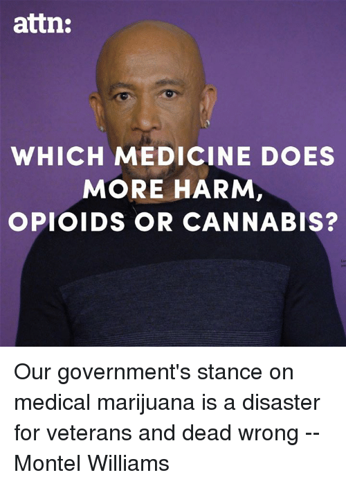 Memes, Marijuana, and Medical Marijuana: attn:  WHICH MEDICINE DOES  MORE HARM,  OPIOIDS OR CANNABIS?  Lod Our government's stance on medical marijuana is a disaster for veterans and dead wrong -- Montel Williams