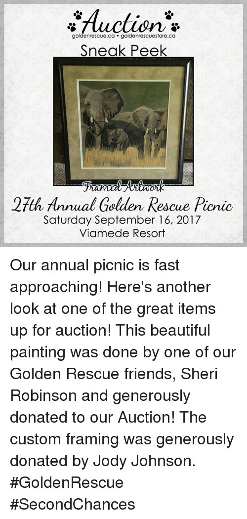 Beautiful, Friends, and Memes: Auction*  goldenrescue.ca goldenrescuestore.ca  Sneak Peek  0.  27th Annual Gelden Rescue Picnic  Saturday September 16, 2017  Viamede Resort Our annual picnic is fast approaching! Here's another look at one of the great items up for auction! This beautiful painting was done by one of our Golden Rescue friends, Sheri Robinson and generously donated to our Auction! The custom framing was generously donated by Jody Johnson. #GoldenRescue #SecondChances