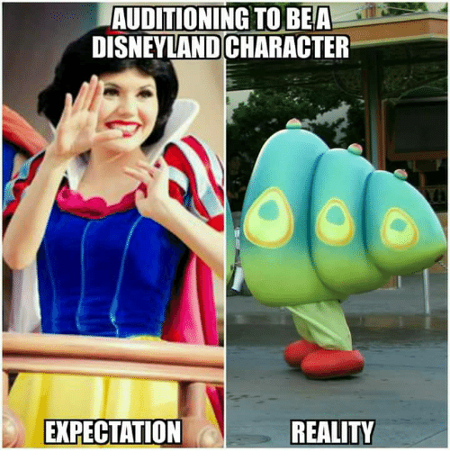 Disneyland, Memes, and 🤖: AUDITIONING TO BE A  DISNEYLAND CHARACTER  REALITY  EXPECTATION