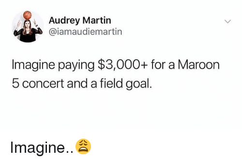 Martin, Goal, and Hood: Audrey Martin  @iamaudiemartin  lmagine paying $3,000+ for a Marodon  5 concert and a field goal. Imagine..😩