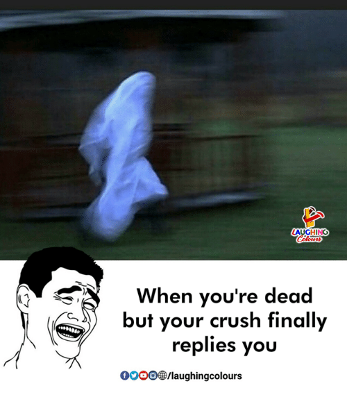 Crush, Indianpeoplefacebook, and You: AUGHING  When you're dead  but your crush finally  replies you  OOOO/laughingcolours