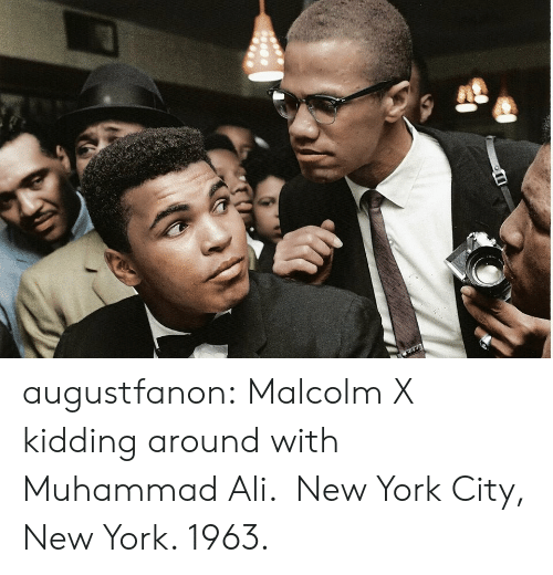 Ali, Malcolm X, and Muhammad Ali: augustfanon:  Malcolm X kidding around with Muhammad Ali.  New York City, New York. 1963.