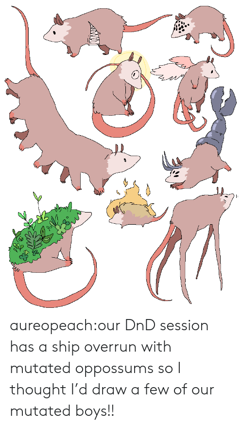 Tumblr, Blog, and DnD: aureopeach:our DnD session has a ship overrun with mutated oppossums so I thought I'd draw a few of our mutated boys!!