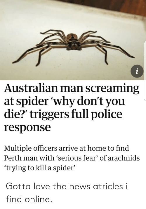 Love, News, and Police: Australian man screaming  at spider 'why don't you  die? triggers full police  response  Multiple officers arrive at home to find  Perth man with 'serious fear' of arachnids  'trying to kill a spider' Gotta love the news atricles i find online.